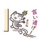 猫と四つ葉のクローバー 5(個別スタンプ:05)