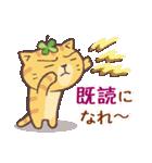 猫と四つ葉のクローバー 5(個別スタンプ:07)
