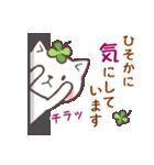 猫と四つ葉のクローバー 5(個別スタンプ:13)