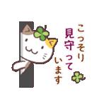 猫と四つ葉のクローバー 5(個別スタンプ:15)