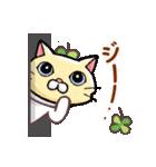 猫と四つ葉のクローバー 5(個別スタンプ:16)