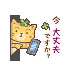 猫と四つ葉のクローバー 5(個別スタンプ:23)
