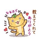 猫と四つ葉のクローバー 5(個別スタンプ:33)