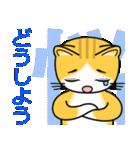涙目でネコ、まっしぐら。(個別スタンプ:37)