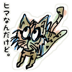 キジトラ猫-ミゼ君-