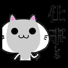 居丈高なネコ
