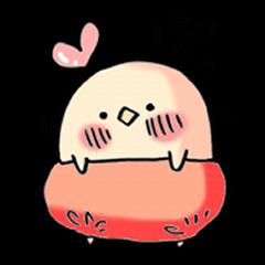 かぼパンひよこ2