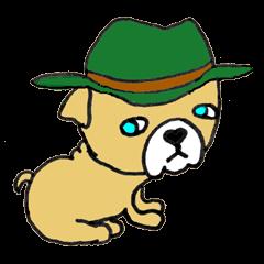 子犬のブー