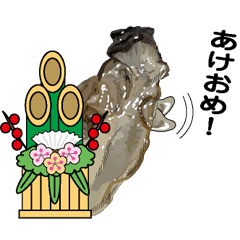 クリスマス・年末・年始【生牡蠣編】