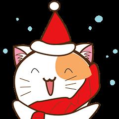 クリスマスの猫ケンタ