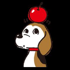 ほぼビーグルのりんごさん