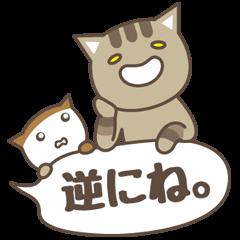 猫たちの共演
