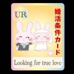 婚活条件カードうさぎ・好ウサ応援3
