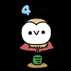 メンフクロウのまめふくちゃん4【敬語編】