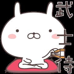 [LINEスタンプ] ゆるうさ5 武士侍編 (1)