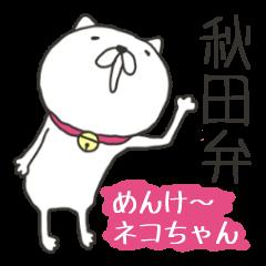 秋田弁めんけ~ネコちゃん