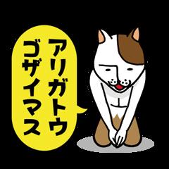 ネコ田 ネコ夫