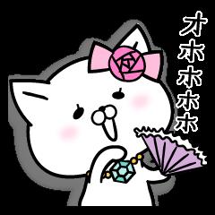 ネコ夫人2