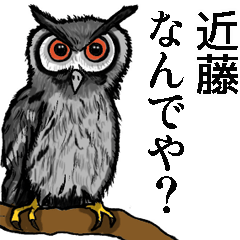 [LINEスタンプ] 近藤さんスタンプ