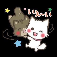 ゆるゆる柴犬コンビ【日常編】
