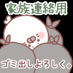 [LINEスタンプ] 家族連絡用❤️あざらしの白ごまさん (1)