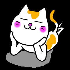 猫太郎&から吉