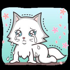 ペルシャ猫こゆき(温かい日常会話)