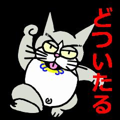 """""""関西猫""""2 ~アイツが帰ってきた編~"""