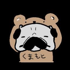 熊本 パグ