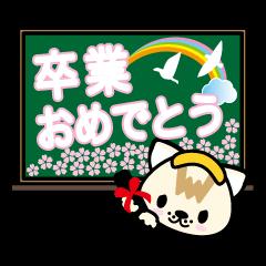 温泉ねこ【卒業式】