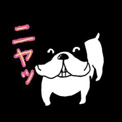 [LINEスタンプ] 愛すべきぶさかわ犬!ワンコがいっぱいの画像(メイン)