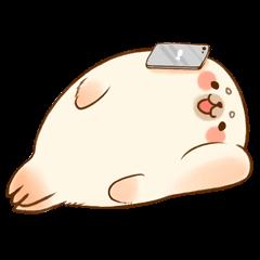 Baby Seal A-SHU