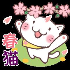 春猫・詰め合わせ