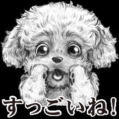 表情豊かな犬たち