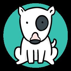 Bull Terrier Dog