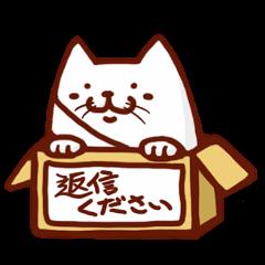 無難に生きる猫