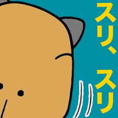 のらカピバラ生活3