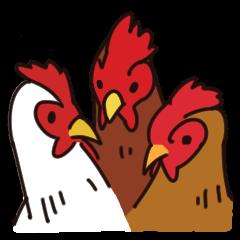 3羽のニワトリ