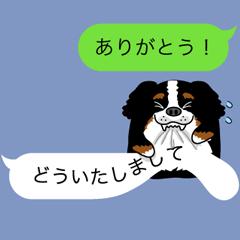 吹き出しでトーク【バーニーズ編】
