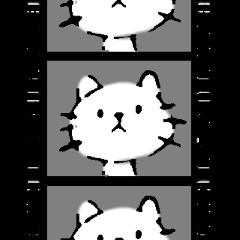 生前のネコ
