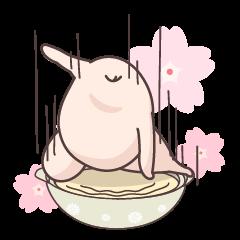 春の参鶏湯ちゃん