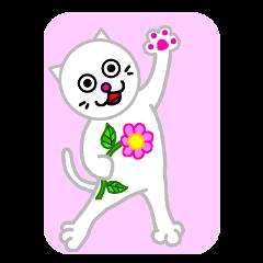 白猫にゃ~ご