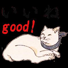 和風CAT