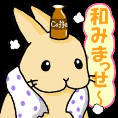 ☆関西弁うさちゃんズ☆