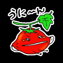 ミニトマトと一緒に天気。一緒に会話。