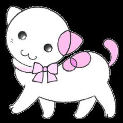 福猫の桜ちゃん ラブリーな日常