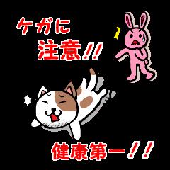 うさとにゃん!!