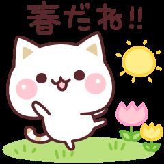 気づかいのできるネコ♪春・GW編