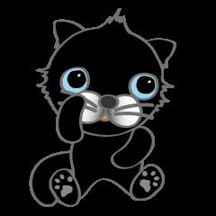 クロ猫のボブで〜す。
