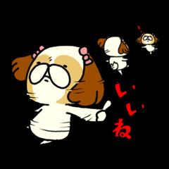 シーズー5(※ここ気持ちいいの?)